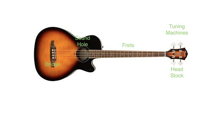 difference-between-bass-and-guitar